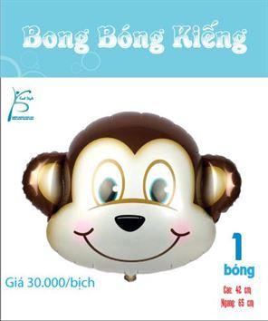 bìa bong bóng kiếng bé khỉ trai