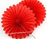 Hoa Rẻ Quạt màu đỏ