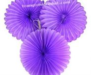 Hoa Rẻ Quạt màu tím