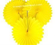 Hoa Rẻ Quạt màu vàng