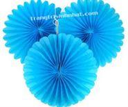 Hoa Rẻ Quạt màu xanh da trời
