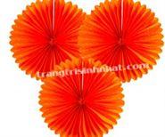 Hoa Rẻ Quạt màu cam