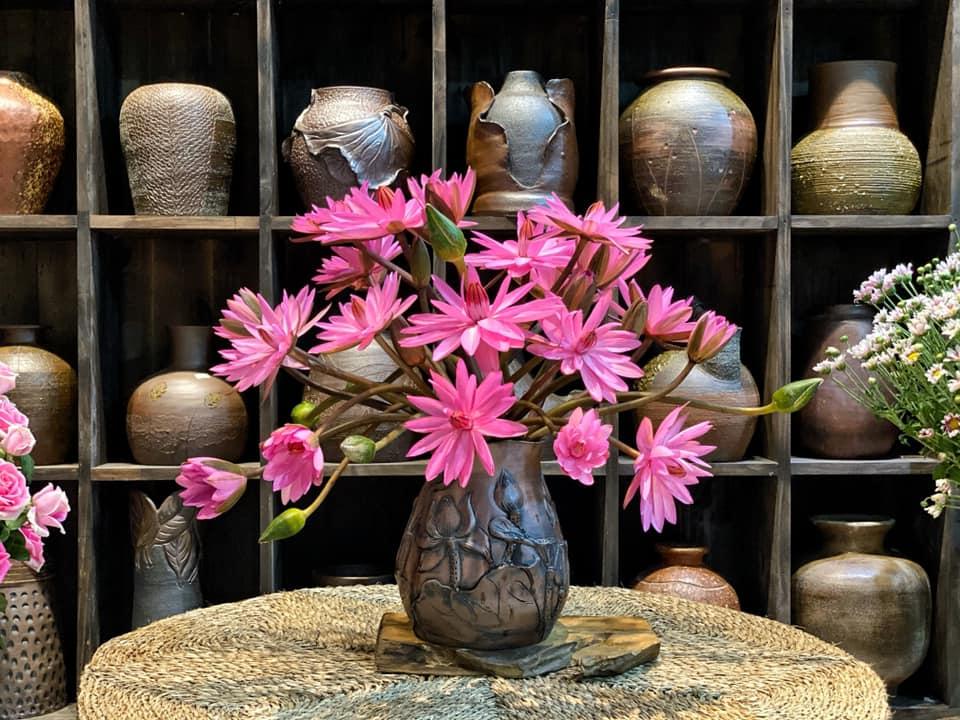 đây là hoa súng ta, hoa này chỉ nở trong bóng tối nhé , nên mn phải để trong tối cho hoa nở rồi mới mang ra ngoài ngắm được hihi, em dùng lọ gốm màu nâu bình cao 30cm miệng 11cm