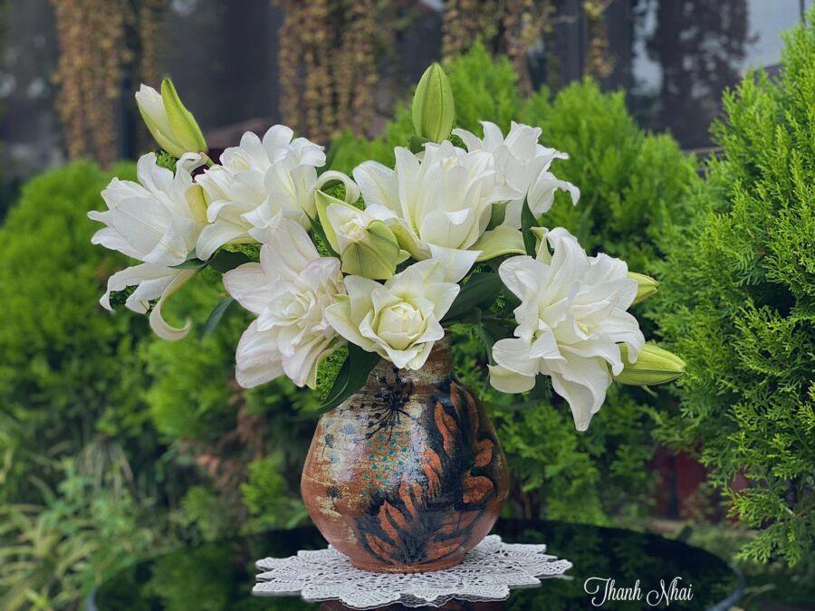 Khi hoa nở có thể hạ độ cao cắm vào bình thấp để thấy rõ vẻ đẹp của bông hoa