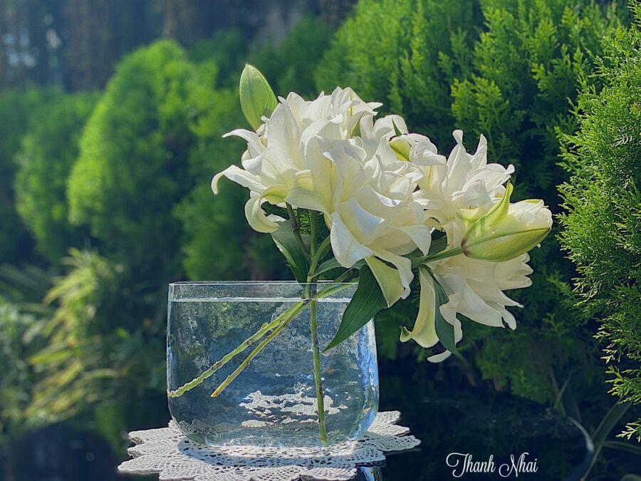 Có thể gác vài cành thật tự nhiên vào lọ thuỷ tinh trong suốt để thấy được vẻ đẹp tinh khiết của hoa ly