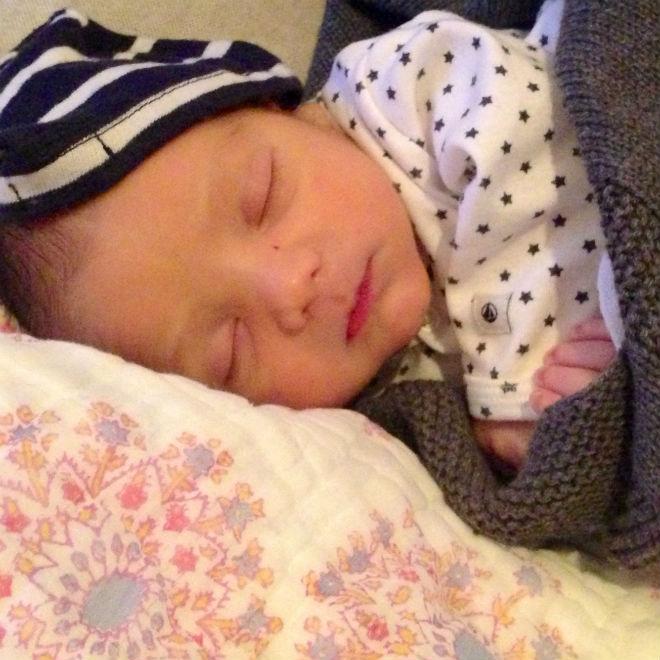 Ảnh: Leo khoảng một tuần tuổi, Olivia Stren